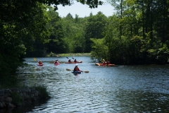 View of pond with kayakers